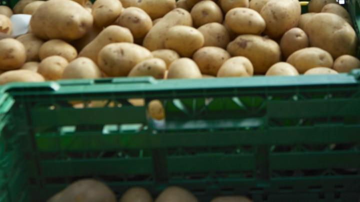 Kartoffelsamstag - Bald geht es los!
